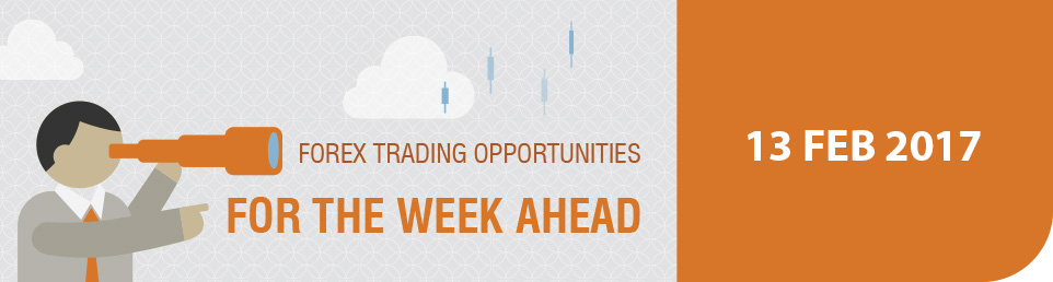 Forex Trading Opportunities for the Week Ahead 13 Feb 17